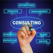 Consulting - Products and Services